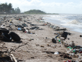 Odpad ocean